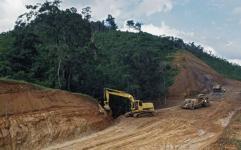 وضعیت جنگل های در حال تنفس اسفبار است