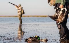 چراغ سبز محیط زیست به شکارچیان