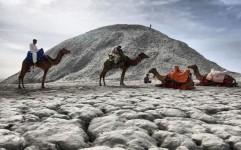 بیش ترین گردشگران ایران از چه حوزه ای هستند؟