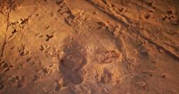 ردپای حیوانات عظیم الجثه در فهرست میراث طبیعی ثبت شد