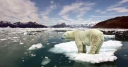 سال 2016 گرم ترین سال جهان در 137 سال گذشته