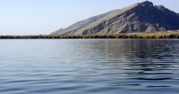 حفاظت از تالاب های ایران با استفاده از رویکرد زیست بومی