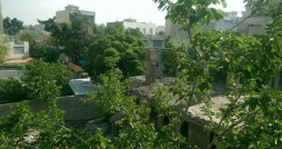 باغ تاریخی «ملک» شهرری در حال ویرانی است