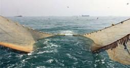 برپایی نشستی با محوریت «خلیج فارس برای ملت های خلیج فارس»