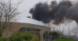 باغ وحش چستر انگلیس طعمه آتش شد