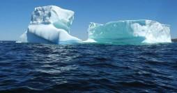 کوه یخ یا پلاستیک