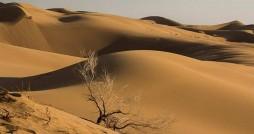 تغییر اقلیم ایران، فرسایش بادی را 30 درصد افزایش داد