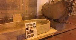 موزه مجموعه جهانی تخت جمشید تا دو هفته تعطیل شد