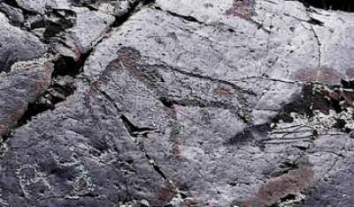 گالری با نقاشی های ۱۵ هزار ساله