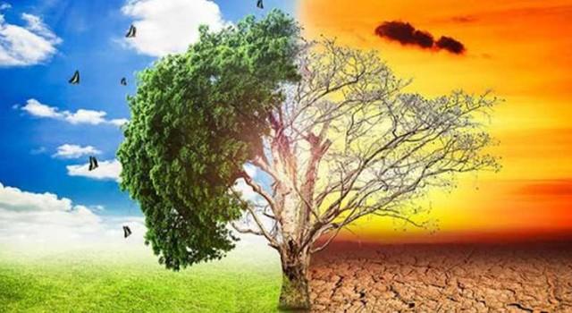 هشدار کارشناسان به پیامدهای تغییرات آب و هوایی علیه امنیت جهان