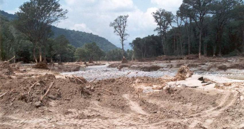در هر ثانیه 350 متر مربع جنگل و مرتع در کشور نابود میشود