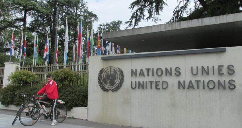 کاشت نهال محیط زیست در مقر سازمان ملل