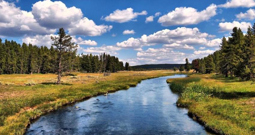 رودخانه ها شریان های اصلی حیات، نیازمند حمایت