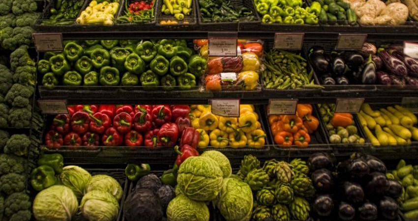 گیاهخواری، راه نجات محیط زیست و انسان