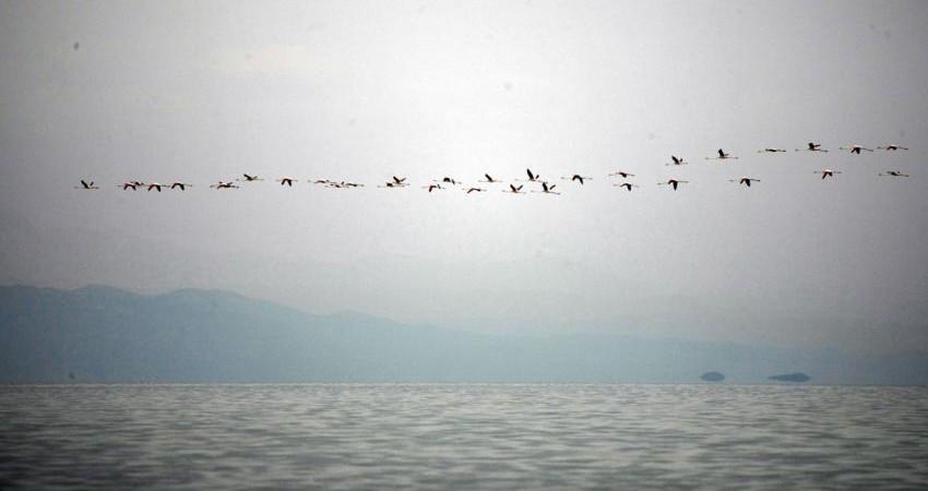 افزایش حجم آب دریاچه ارومیه به ۳.۱۴ میلیارد متر مکعب