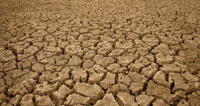 خسارت 940 میلیارد ریالی خشكسالی به مناطق حفاظت شده یزد