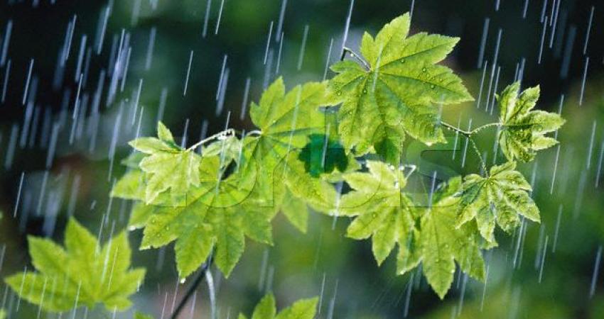 تا دوشنبه هوای گیلان بارانی است