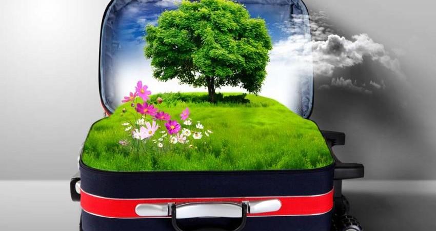 چگونه سبز سفر کنیم؟