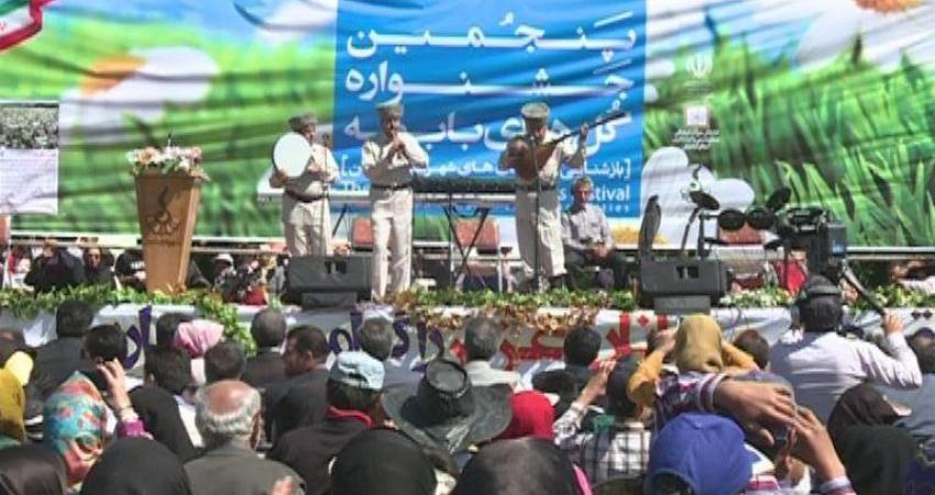 جشنواره گل های بابونه در فندقلوی نمین برگزار شد