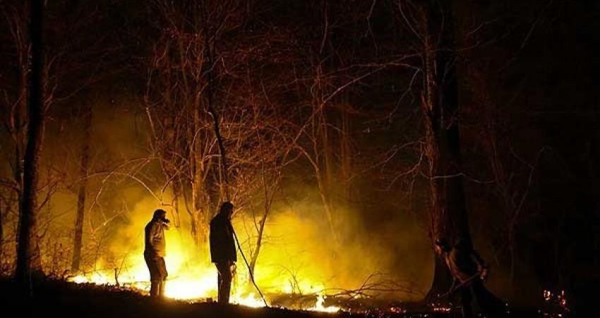 آتش سوزی در مراتع کلاردشت ادامه دارد
