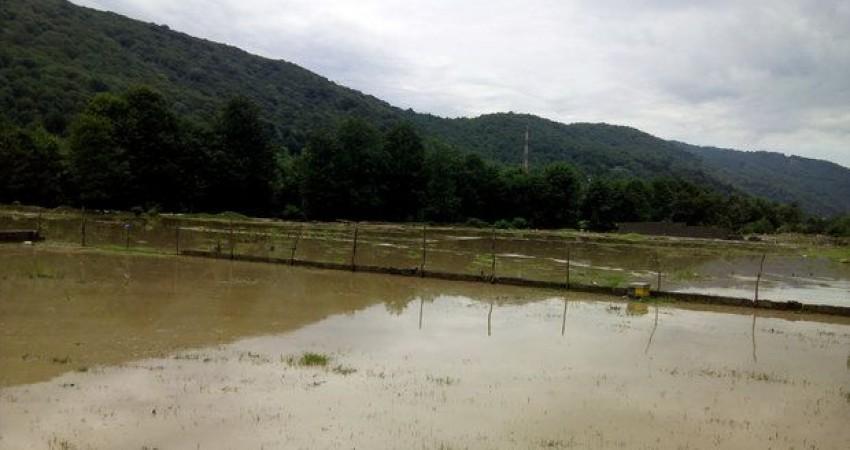 طرح گردشگری رودخانه جاجرود کلنگ زنی شد