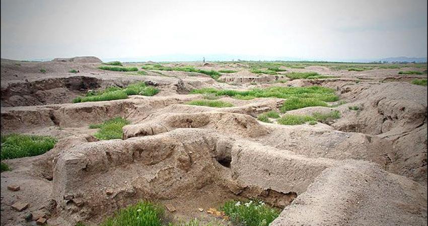 بیابانی  شدن 100 هزار هکتار از دشت قزوین