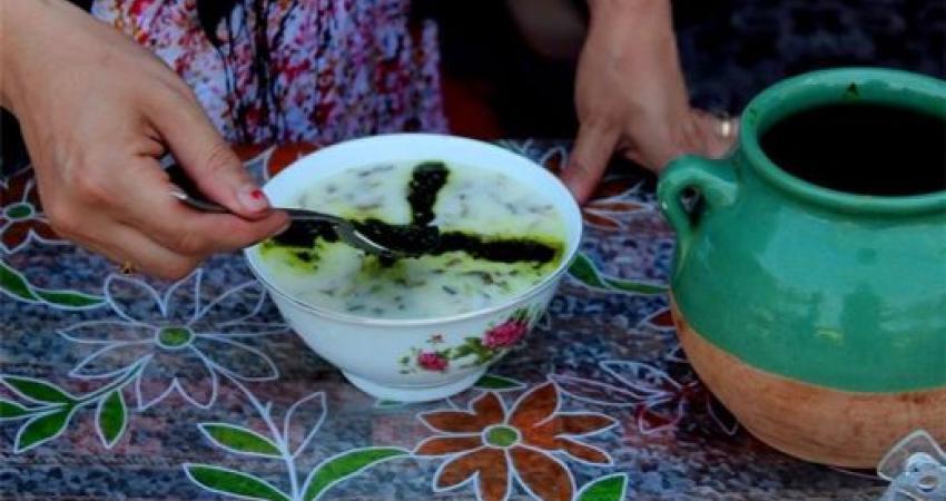 بازدید رحمانی موحد از جشنواره بین المللی غذای کشورهای اکو-جاده ابریشم