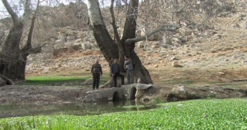 3 اثر طبیعی فارس ثبت ملی شد