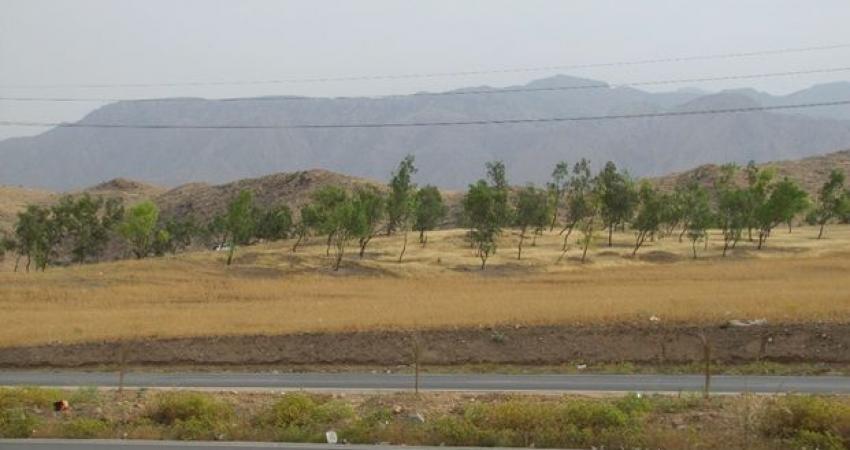 شخم زدن تپه باستانی پارک جنگلی گچساران