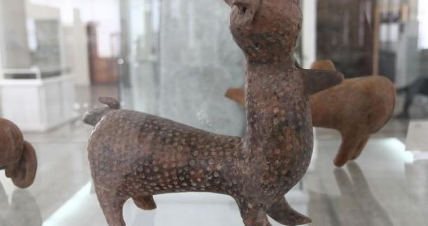 آثار تاریخی در موزه ها چگونه ثبت، شماره بندی و لیبل گذاری می شوند؟
