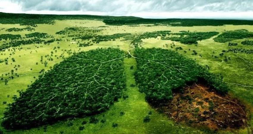 حفاظت از محیط زیست و فرهنگ استفاده از طبیعت