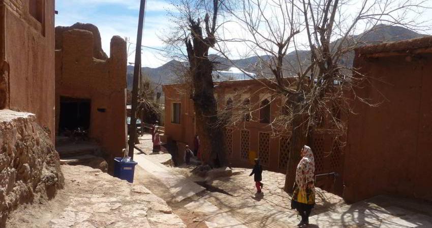 تسهیل در ثبت جهانی روستای ابیانه با تشکیل پایگاه حفاظت ملی
