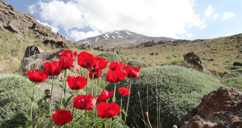 ثبت جهانی قله دماوند در دست پیگیری است