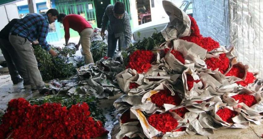 قیمت گل تا پایان سال ارزان می شود