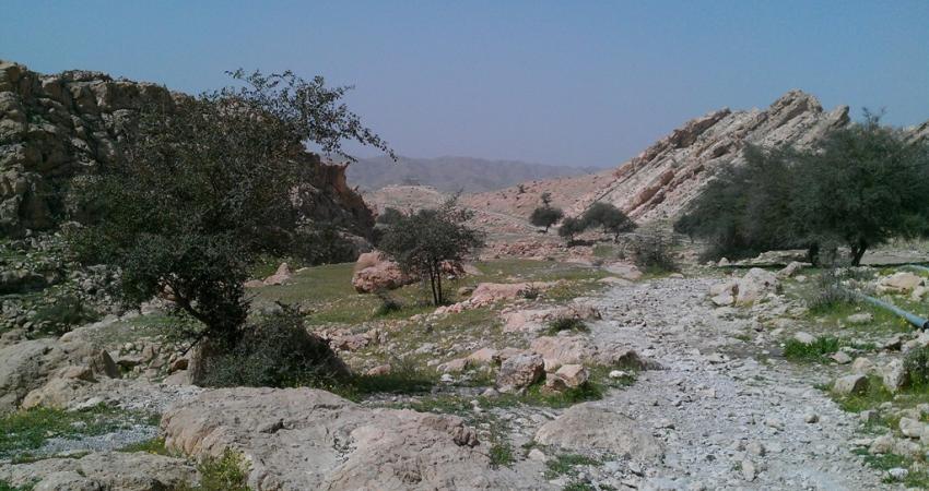 کشف گنجینه تاریخی در خارستان بهبهان دروغ 13 بدری بود