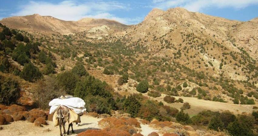 ظرفیت های طبیعت گردی خراسان شمالی و نقش آن در توسعه پایدار
