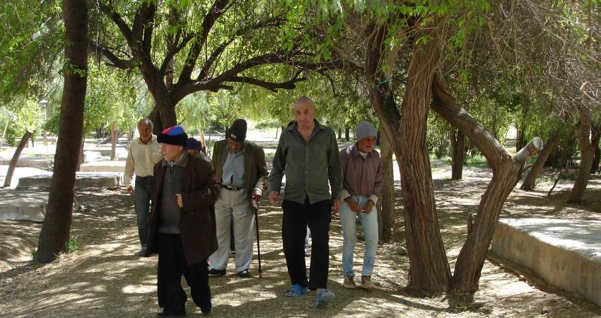 چرا توسعه گردشگری سالمندی ضرورت دارد؟
