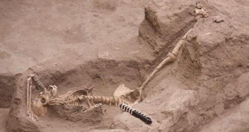 کشف جسد شش زن و یک رسم بی رحمانه