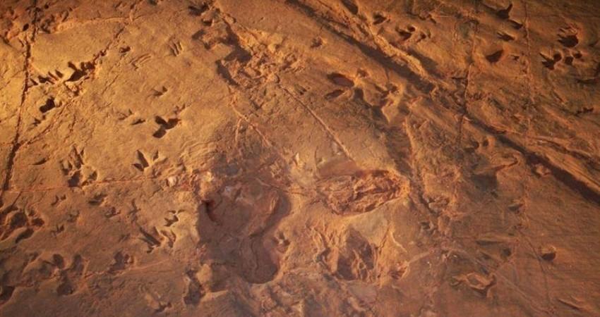 رد پاهای عظیم الجثه در بیرجند ثبت ملی شدند