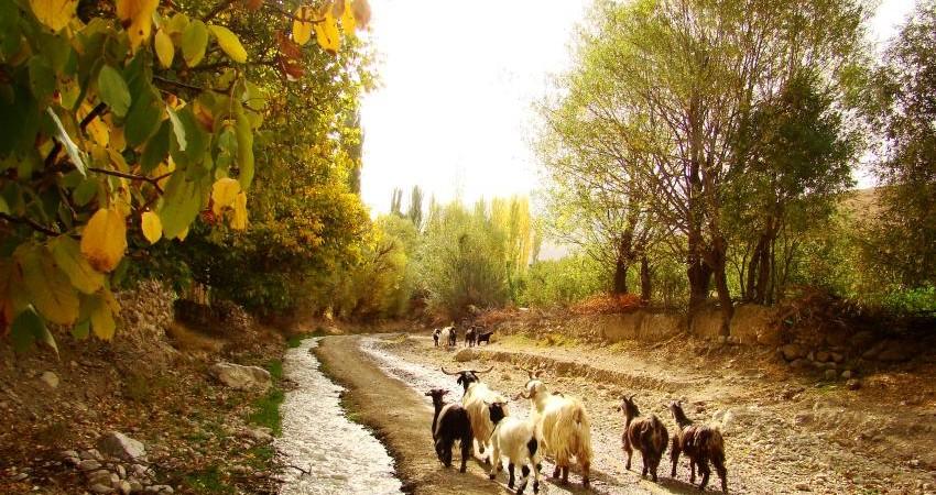معرفی 9 مسیر گردشگری روستایی در شهرستان درگز