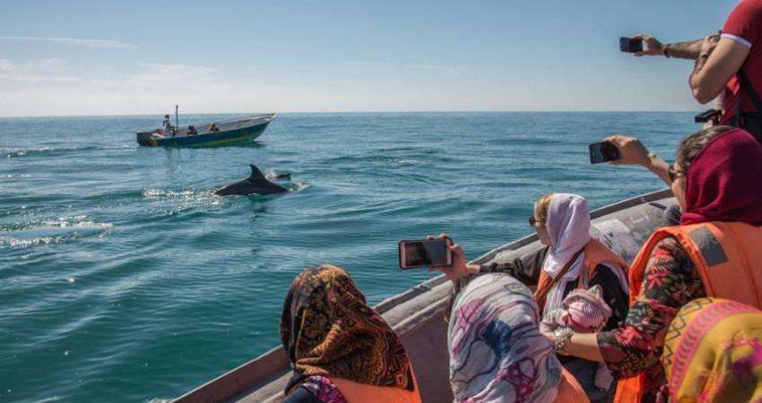 رونق گردشگری دریایی در قشم؛ بدون ویزا
