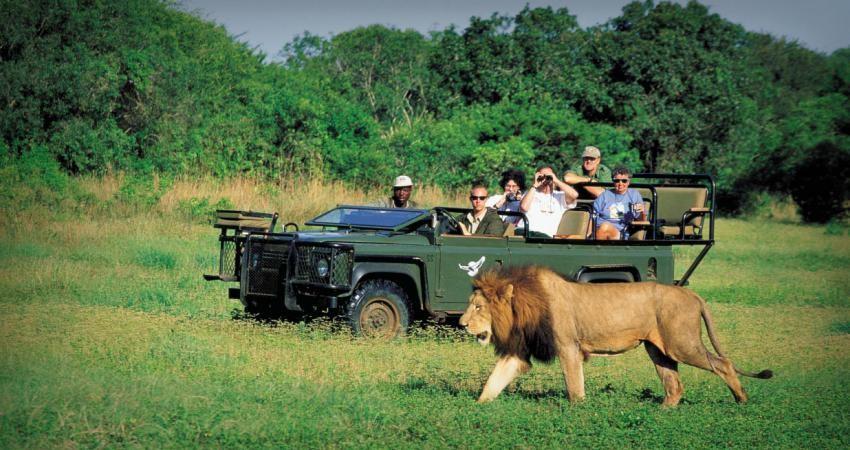 5 پیشنهاد برای توسعه روابط گردشگری با آفریقای جنوبی
