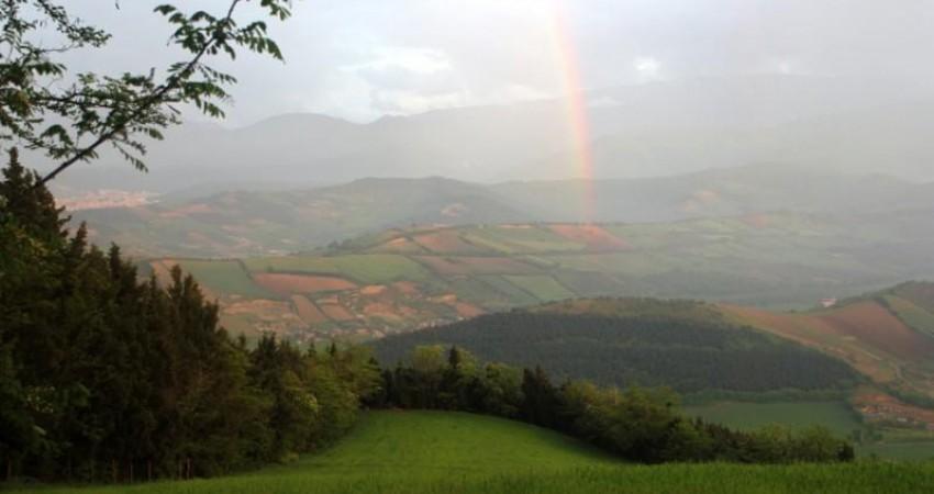 جاذبه های گردشگری، طبیعی و فرهنگی گرگان