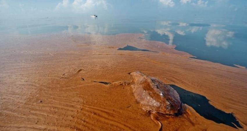 مرگبارترین فجایع زیست محیطی یک قرن اخیر