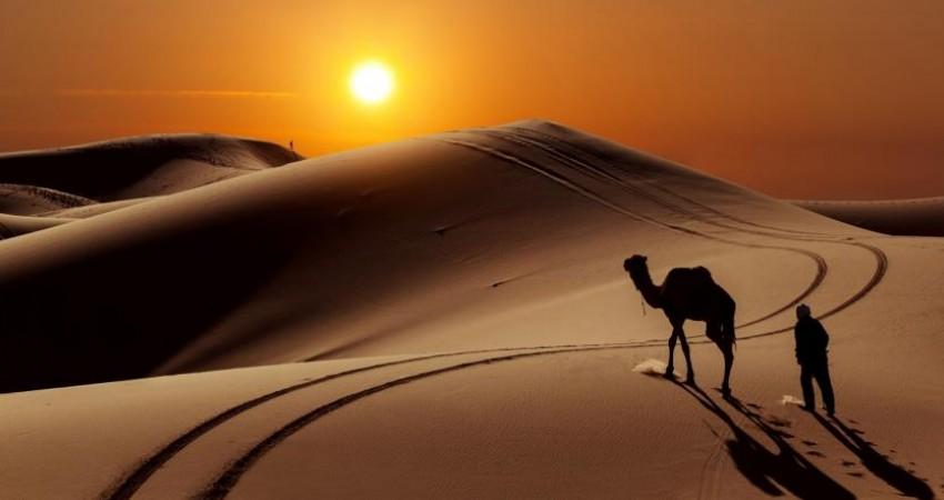مسیرهای گردشگری به مناطق عرصه و حریم بیابان لوت بررسی شد