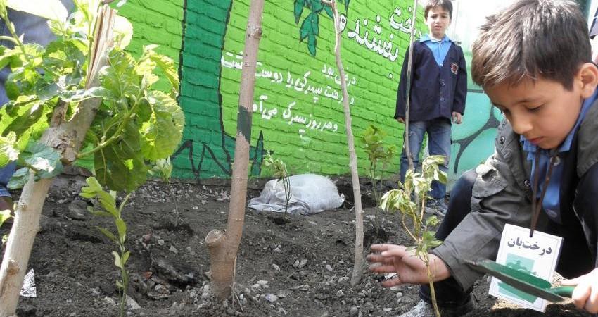 آیا مدارس طبیعت حال محیط زیست ما را خوب می کند؟
