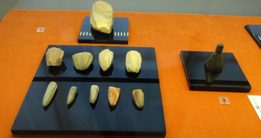 نمایش آثار بازگشته از ایتالیا امروز در موزه ملی
