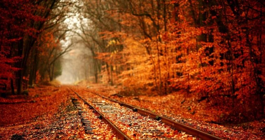 گردشگری پاییزی با قطار را جدی بگیریم