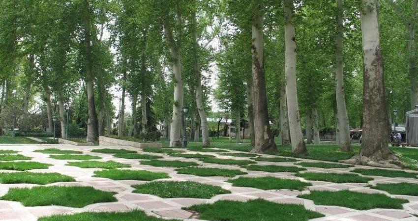 بازدید فرستادگان شهردار تهران از فضای سبز نیاوران