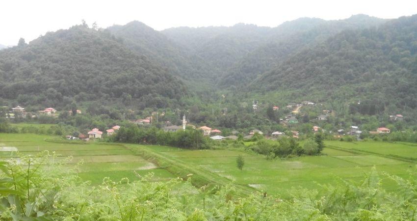 معرفی اولین روستای سبز در تالش